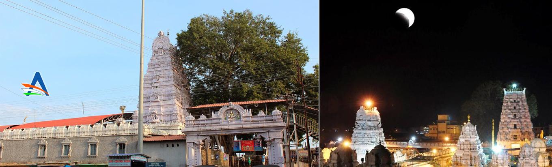 Vemulavada Sri Raja Rajeshwara Temple