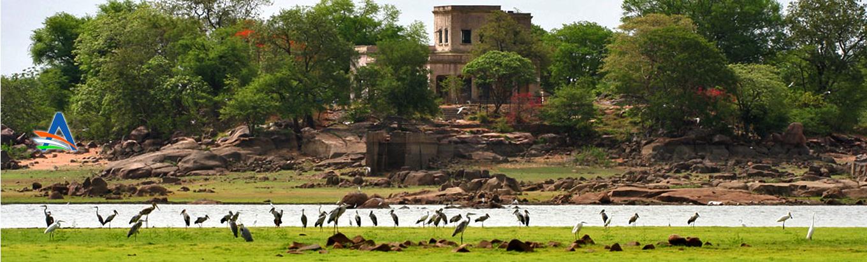 Witness nature from close at Pocharam wildlife sanctuary, Nizamabad