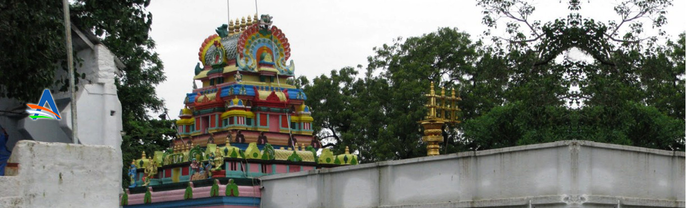 How to reach the holy temple Chilukur Balaji temple
