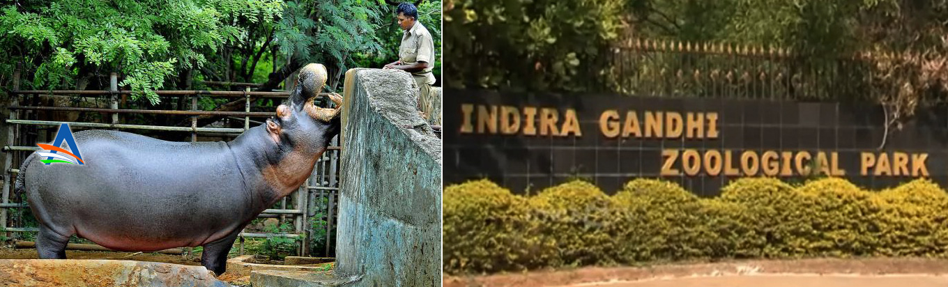 Witness the diverse life forms in the Indira Gandhi Zoological Park